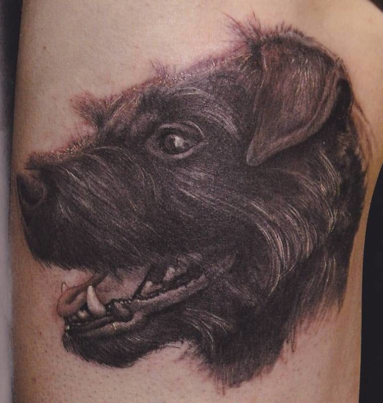 Latest Black Dog Head Tattoo Design