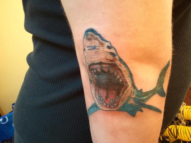 Angry Open Mouth Dangerous Shark Tattoo On Elbow