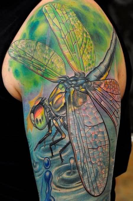 Brilliant Big Dragonfly Tattoo Design For Upper Sleeve Made By Colorful Ink
