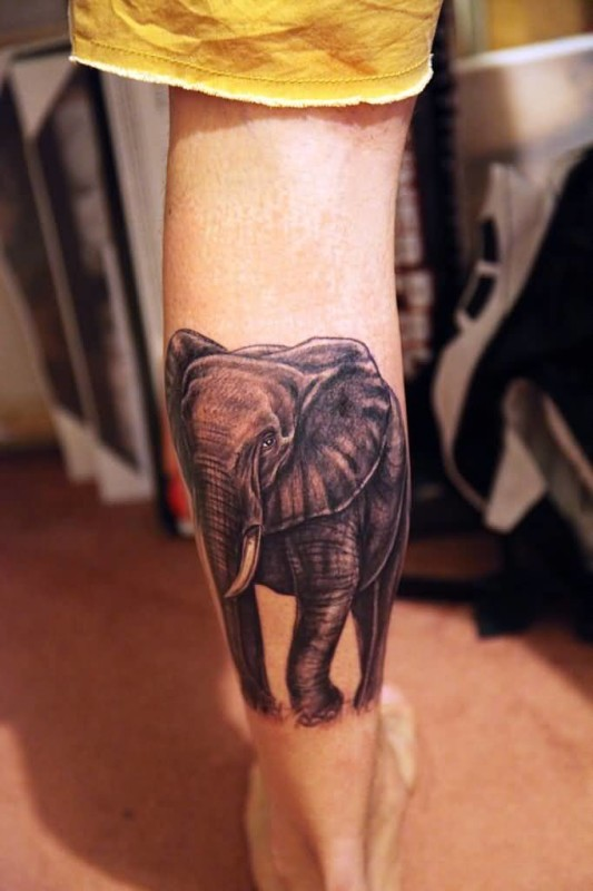 Elephant Tattoos Images Pictures Tattoos Hunter
