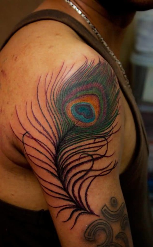 Peacock feather tattoo ideas and peacock feather tattoo for Feather arm tattoo designs