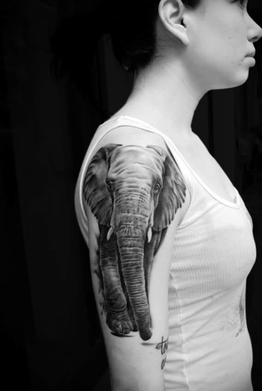 Marvelous Indian Elephant Tattoo Design For Upper Sleeve
