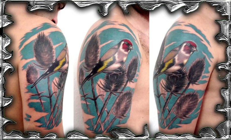 Men Show Wonderful Fantasy Birds Tattoo On Upper Sleeve