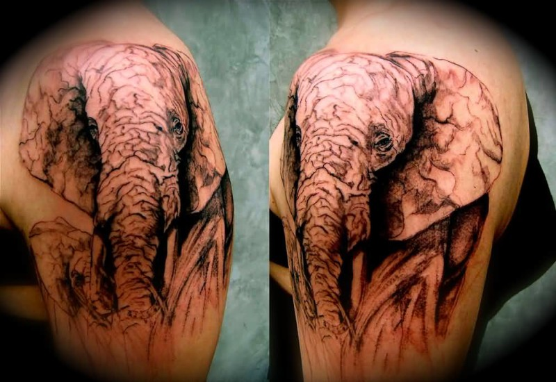 Nice One Elephant Face Tattoo Design Make On Upper Sleeve
