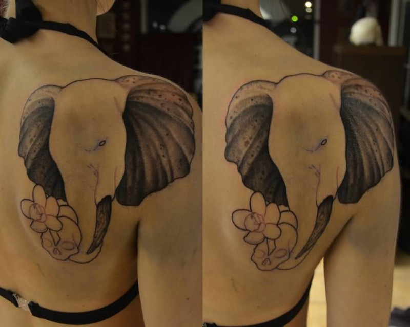Elephant back tattoo ideas and elephant back tattoo designs for Temporary elephant tattoo