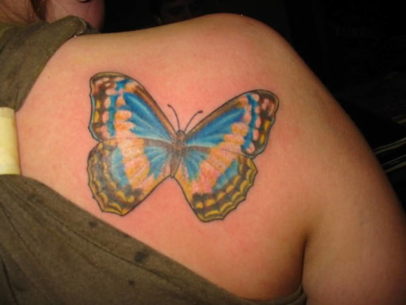 Upper Side Back Decorated With Classy Feminine Butterfly Tattoo