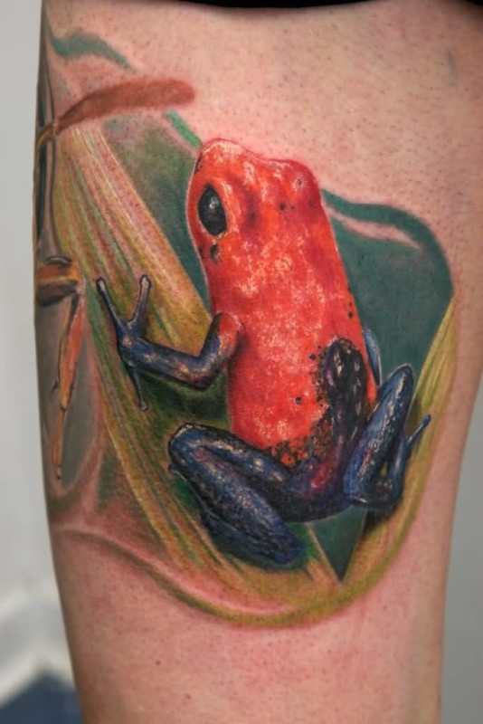 Nice One 3D Frog Tattoo Image Made By Ink