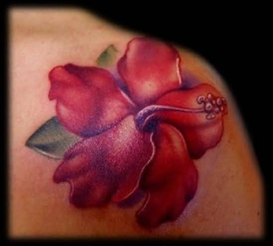 Awesome Hibiscus Flower Tattoo Made By Perfect Artist