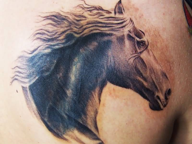 horse head tattoo ideas and horse head tattoo designs page 4