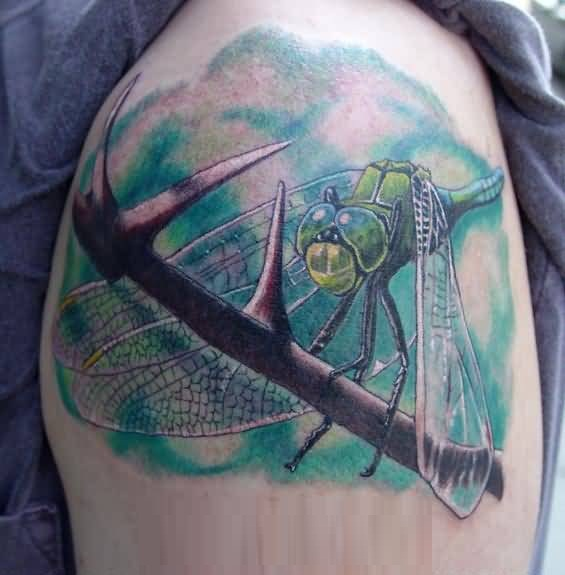 Dragonfly Insect With Tree Tattoo On Upper Sleeve