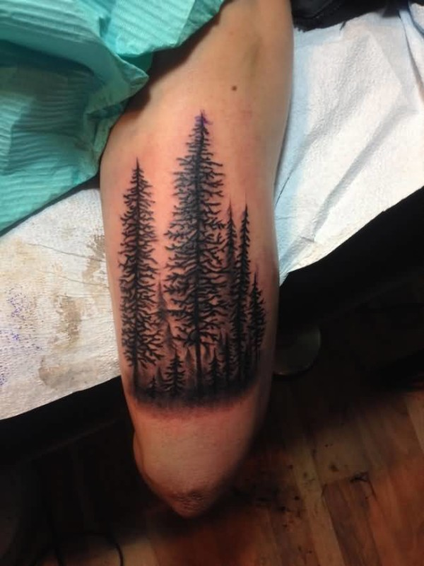 Fantastic Old Style Forest Tree Tattoo On Thigh