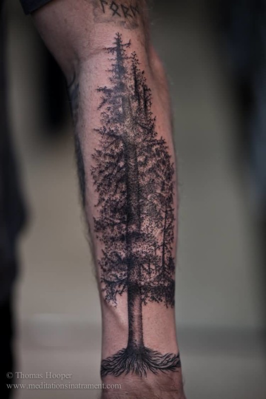Lower Arm Nice One Big Forest Tree Tattoo