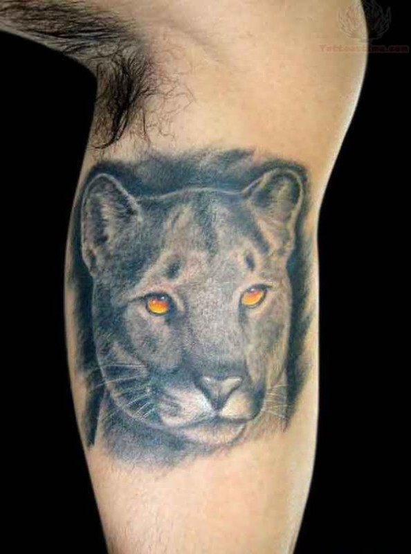 Nice Best Ever Grey Ink Puma Head Tattoo Design Image