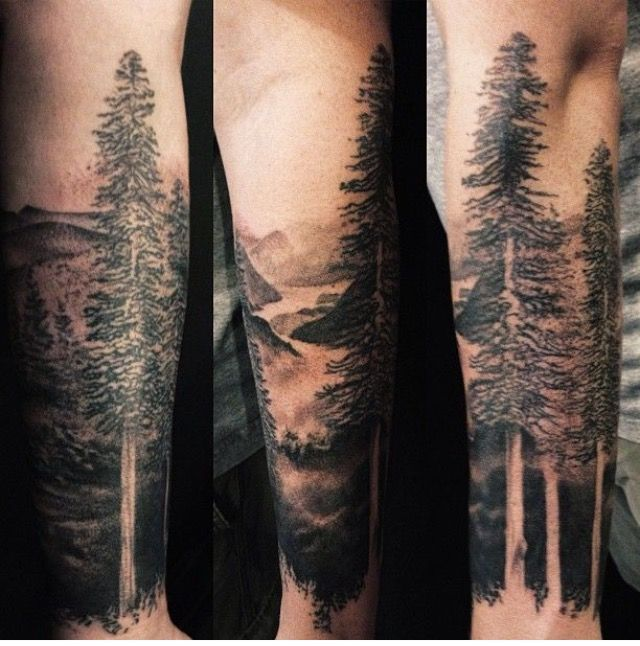 Nice Simple Forest Tree Tattoo Made By Black And Grey Ink
