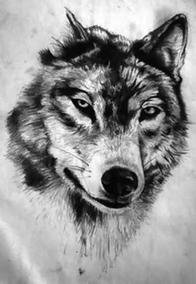 Awesome Angry Wolf Dotwork Face Tattoo Design