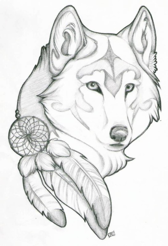 Dream Catcher Feather And Wolf Head Tattoo Stencil