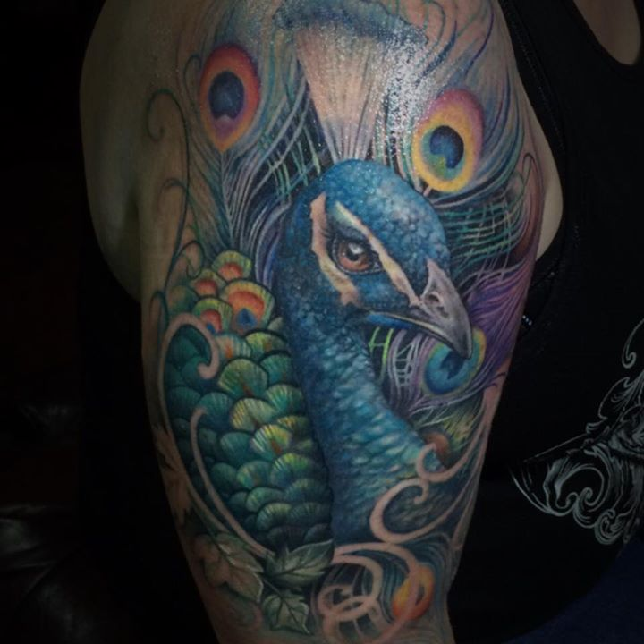 Realsitic Awesome Colorful Peacock And Feather Tattoo Design By Samm Lacey